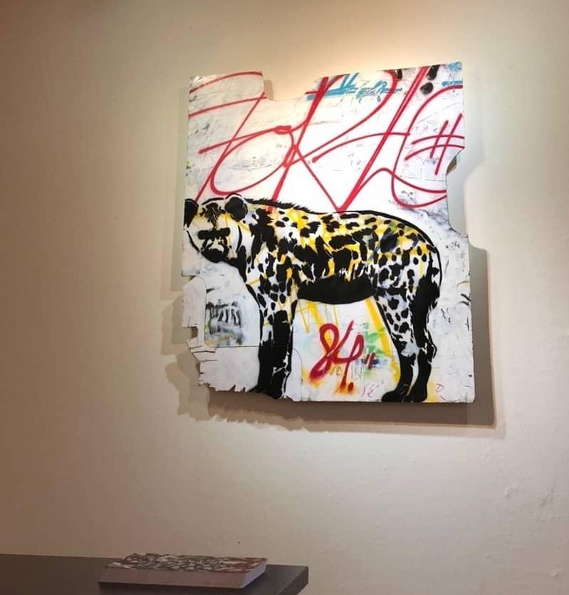 XOOOOX Hyena Installation